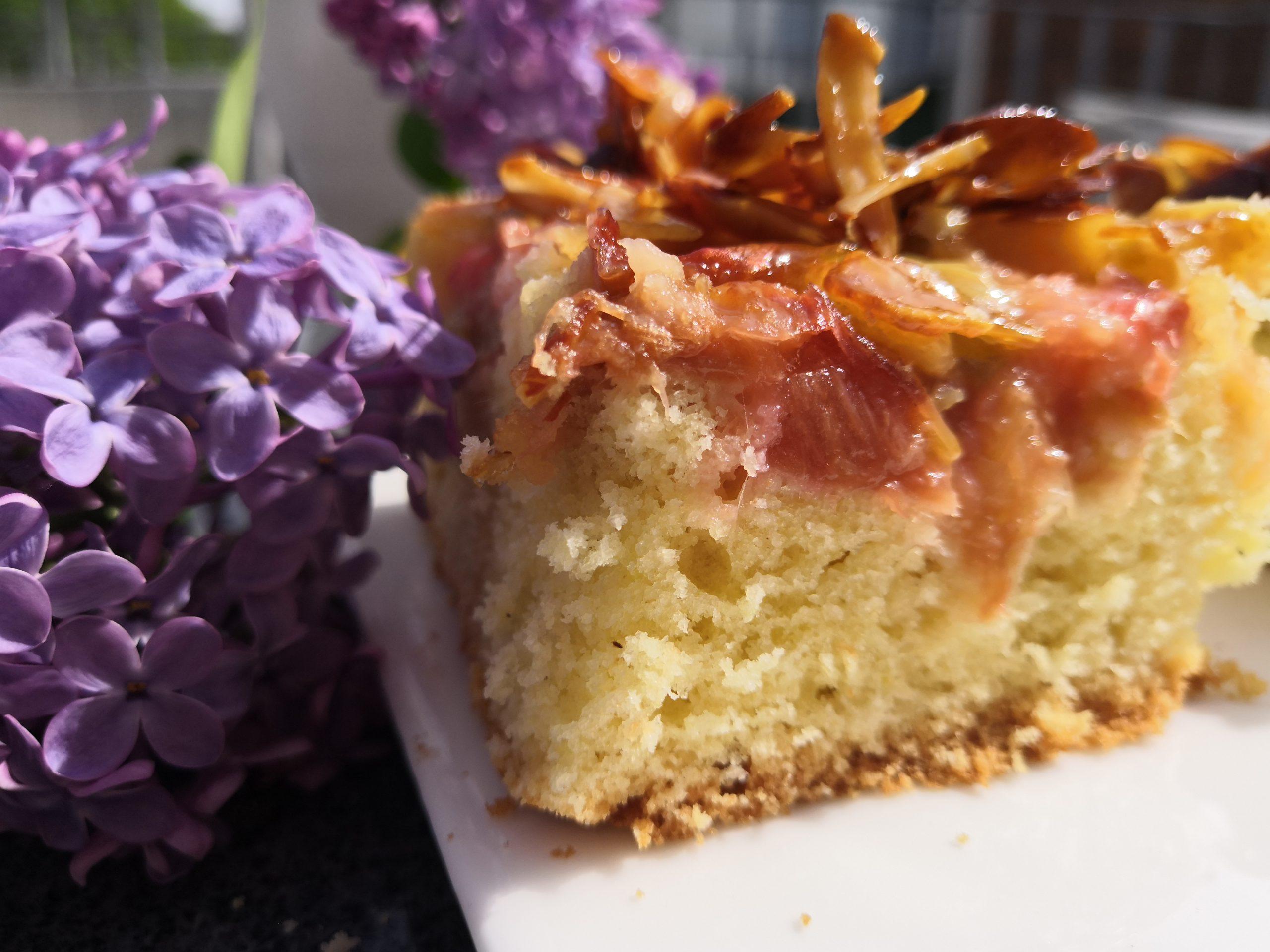 Rhabarberkuchen mit Bienenstichdecke